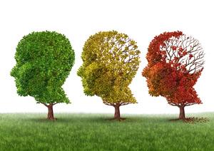 Alzheimer's a 360 Degree Treatment.
